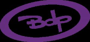 bdp-net-microvell-informatica